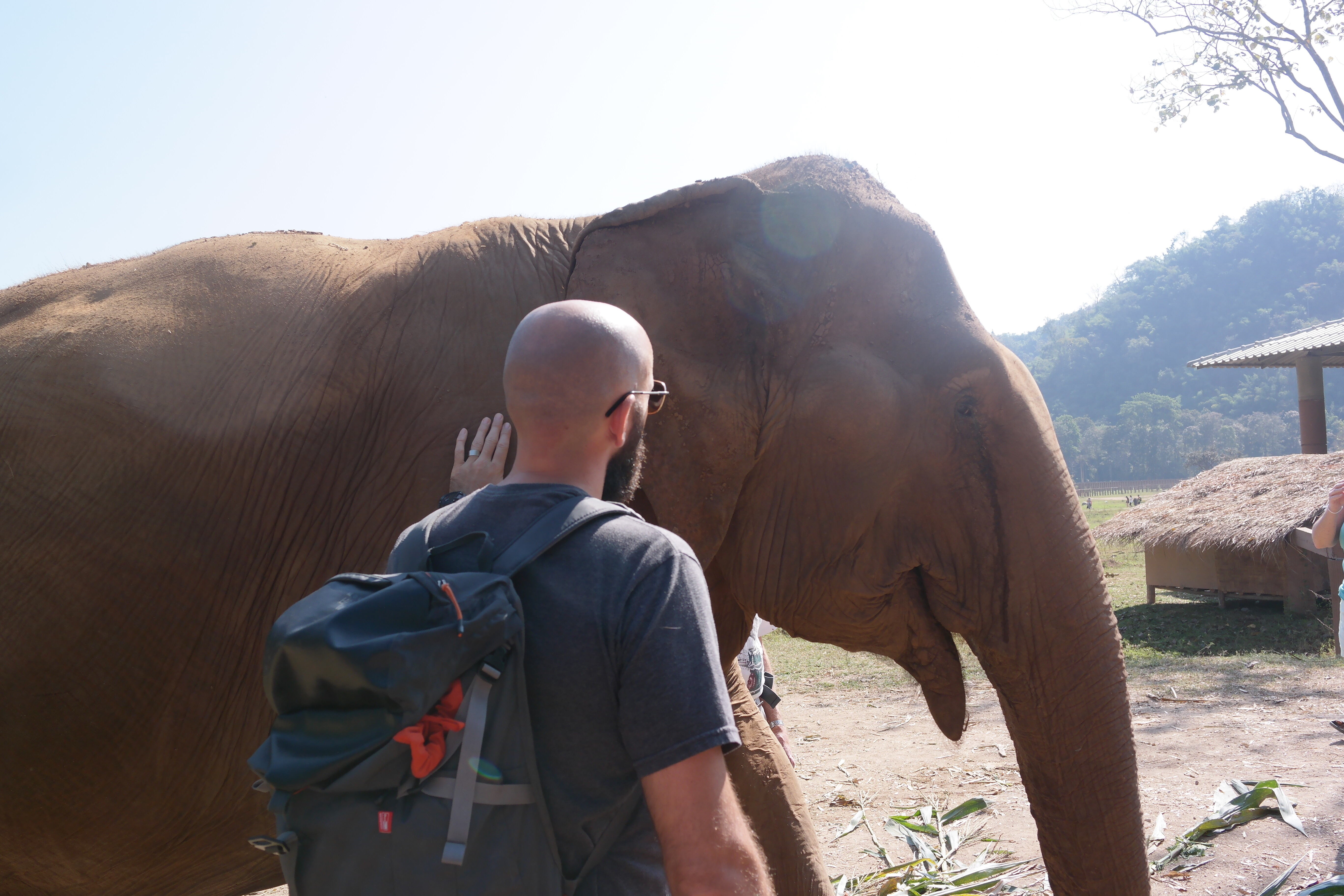Elephant Nature Park – The Peelander Project